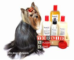 Yorkie Grooming Products, Yorkie Shampoo and Conitioner